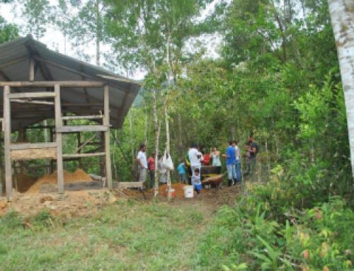 XIV Vivência Agroflorestal – Bioconstrução
